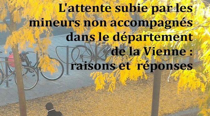 «L'attente subie par les Mineurs non accompagnés dans le departement de la VIENNE», publication projet REMIV